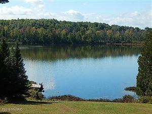 Photo of 318 Sage Lake Road, Rose City, MI 48654 (MLS # 19000944)