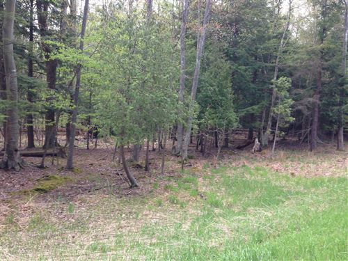 Photo of Lots 2&3 Portage Point Dr 25&26, Onekama, MI 49675 (MLS # 17049958)