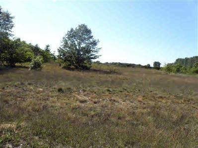 Photo of 24 Trim Lake View Estates, New Era, MI 49446 (MLS # 10007960)