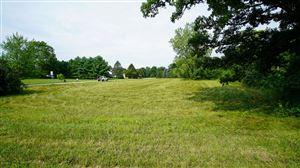 Photo of 1056 Brookwood Drive, Quincy, MI 49082 (MLS # 19039973)