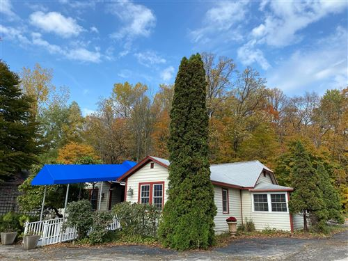 Photo of 15460 Red Arrow Highway, Lakeside, MI 49116 (MLS # 20032985)