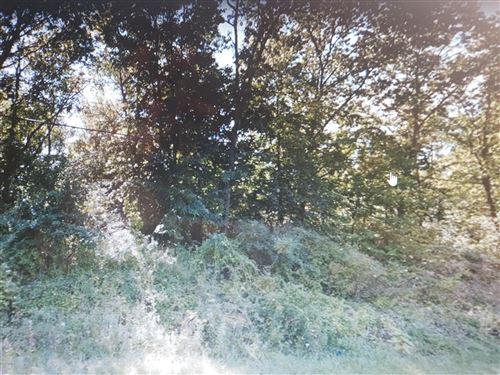 Photo of Lot A Wood Road, Sheridan, MI 48884 (MLS # 20019987)
