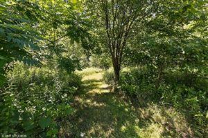 Photo of 13450 Trillium Lane #lot 20, New Buffalo, MI 49117 (MLS # 18058989)