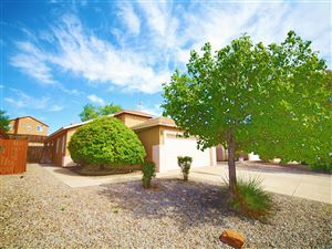 Photo of 4713 Shepherd Court NE, Rio Rancho, NM 87144 (MLS # 952025)