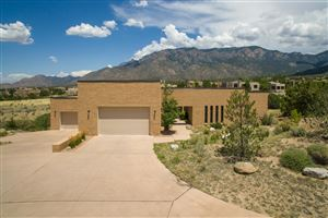 Photo of 13709 Apache Plume Place NE, Albuquerque, NM 87111 (MLS # 951116)