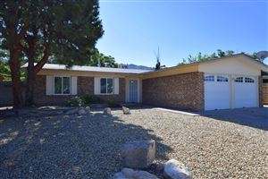 Photo of 1212 Willys Knight Drive NE, Albuquerque, NM 87112 (MLS # 945208)
