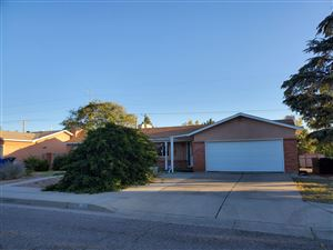 Photo of 8810 LAGRIMA DE ORO Road NE, Albuquerque, NM 87111 (MLS # 956286)