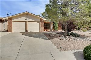Photo of 5300 Purcell Drive NE, Albuquerque, NM 87111 (MLS # 956343)