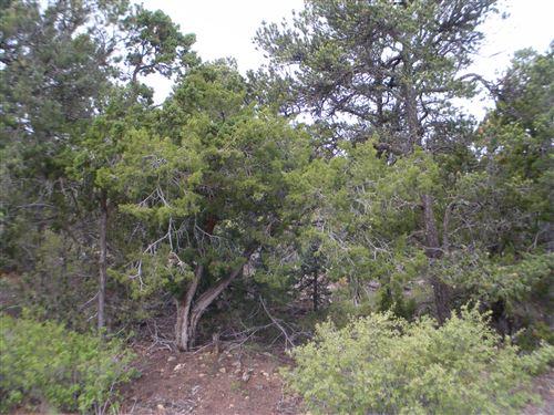Photo of 8 Fir Loop, Cedar Crest, NM 87008 (MLS # 944349)