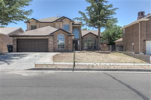 Photo of 9624 Palomas Avenue NE, Albuquerque, NM 87109 (MLS # 948378)