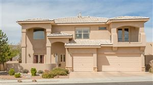 Photo of 8119 Via Alegre NE, Albuquerque, NM 87122 (MLS # 941454)