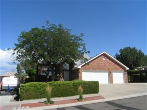 Photo of 9504 Cody Street NW, Albuquerque, NM 87114 (MLS # 949476)
