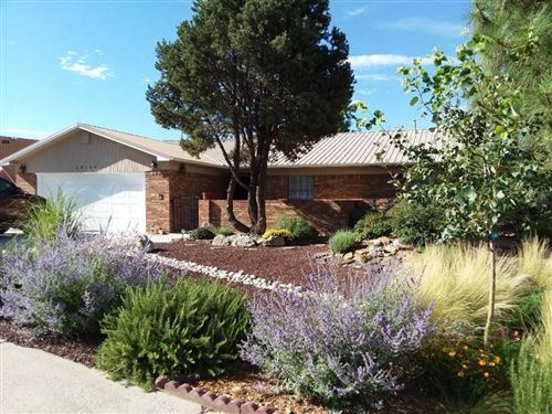 Photo of 13108 Tierra Montanosa Drive NE, Albuquerque, NM 87112 (MLS # 973478)