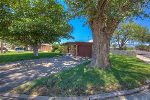 Photo of 3002 GRACELAND Drive NE, Albuquerque, NM 87110 (MLS # 974515)