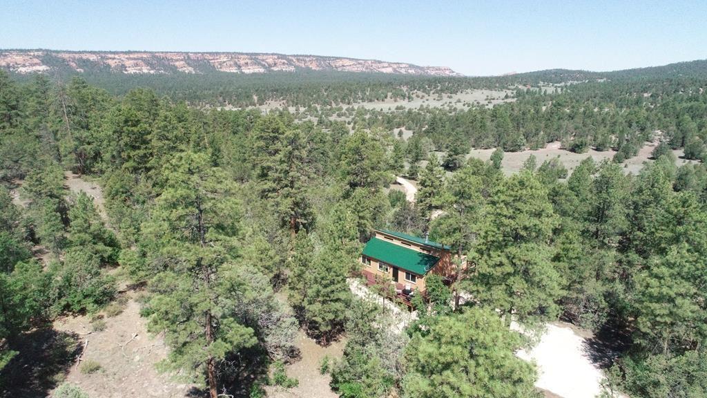 134 E Elk Drive, Ramah, NM 87321 - #: 970554