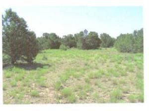 Photo of 275 Federal Forest NE, Mountainair, NM 87036 (MLS # 498660)
