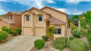 Photo of 8208 Copper Leaf Trail NE, Albuquerque, NM 87122 (MLS # 948734)