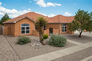 Photo of 7004 Santa Rachel Street NE, Albuquerque, NM 87113 (MLS # 947795)