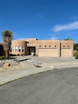 Photo of 8904 HELMICK Place NE, Albuquerque, NM 87122 (MLS # 996827)
