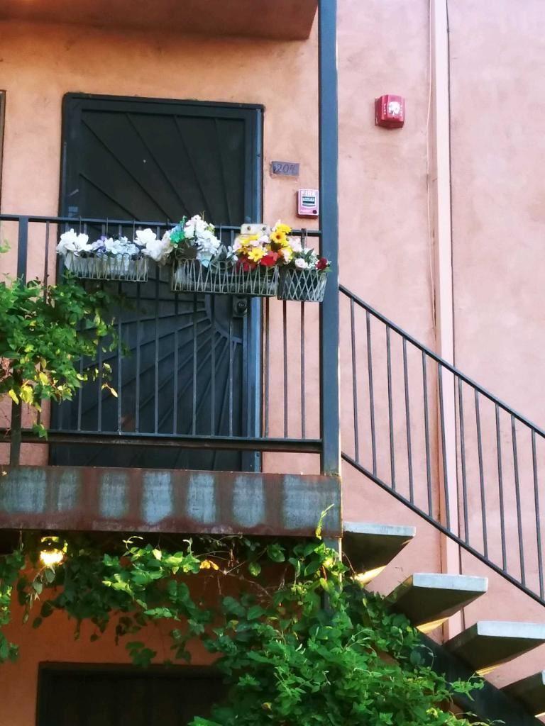 Photo of 2800 VAIL Avenue SE #204, Albuquerque, NM 87106 (MLS # 970878)