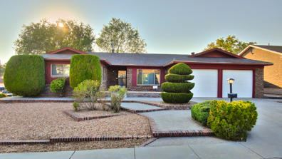 Photo of 12101 Genoa Street NE, Albuquerque, NM 87111 (MLS # 978927)