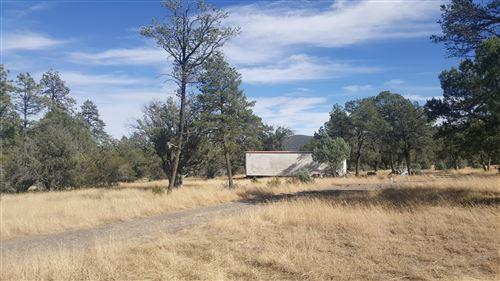Tiny photo for 20 Martinez Road, Reserve, NM 87830 (MLS # 908929)
