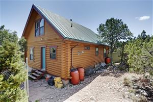 Photo of 10 Osha Springs Road, Placitas, NM 87043 (MLS # 941968)