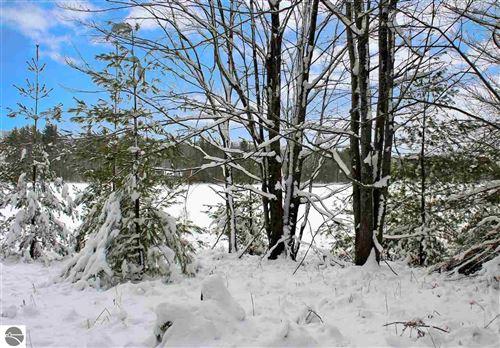 Photo of 312 SE Blue Heron Drive, Kalkaska, MI 49646 (MLS # 1881596)