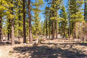Photo of 8406 Newhall Drive, Truckee, CA 96161 (MLS # 20190580)