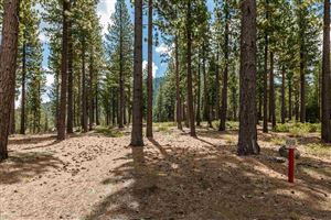 Photo of 7094 Villandry Circle, Truckee, CA 96161 (MLS # 20190909)