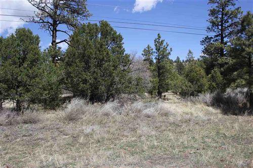Photo of Lot 2 Hwy 64, Ute Park, NM 87749 (MLS # 105056)