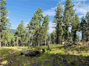 Photo of 1561 Luna Drive, Angel Fire, NM 87710 (MLS # 104057)