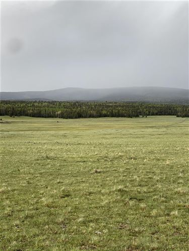 Photo of 30 acres off of Hwy 120, Angel Fire, NM 87710 (MLS # 107072)