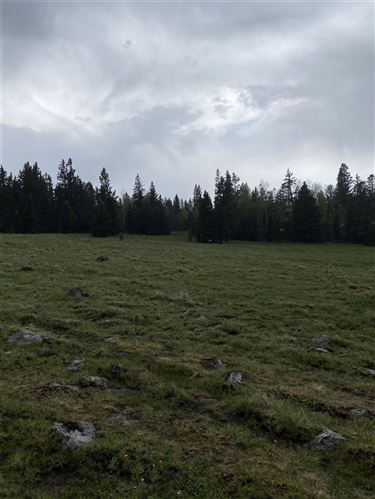 Photo of 70 Acres off of Hwy 120, Angel Fire, NM 87710 (MLS # 107073)