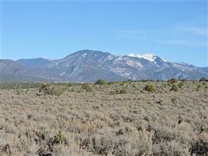 Tiny photo for Los Rios Road, Arroyo Hondo, NM 87513 (MLS # 101077)
