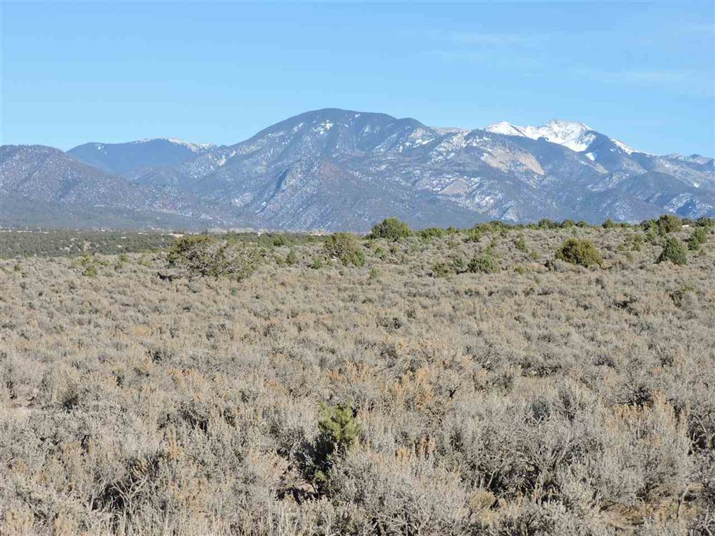 Photo for Los Rios Road, Arroyo Hondo, NM 87513 (MLS # 101077)