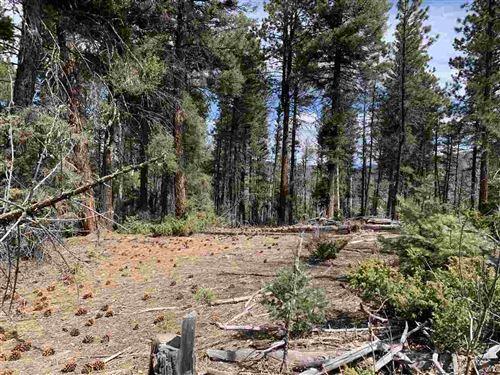 Tiny photo for 0 Valle Escondido Road, Valle Escondido, NM 87571 (MLS # 105091)