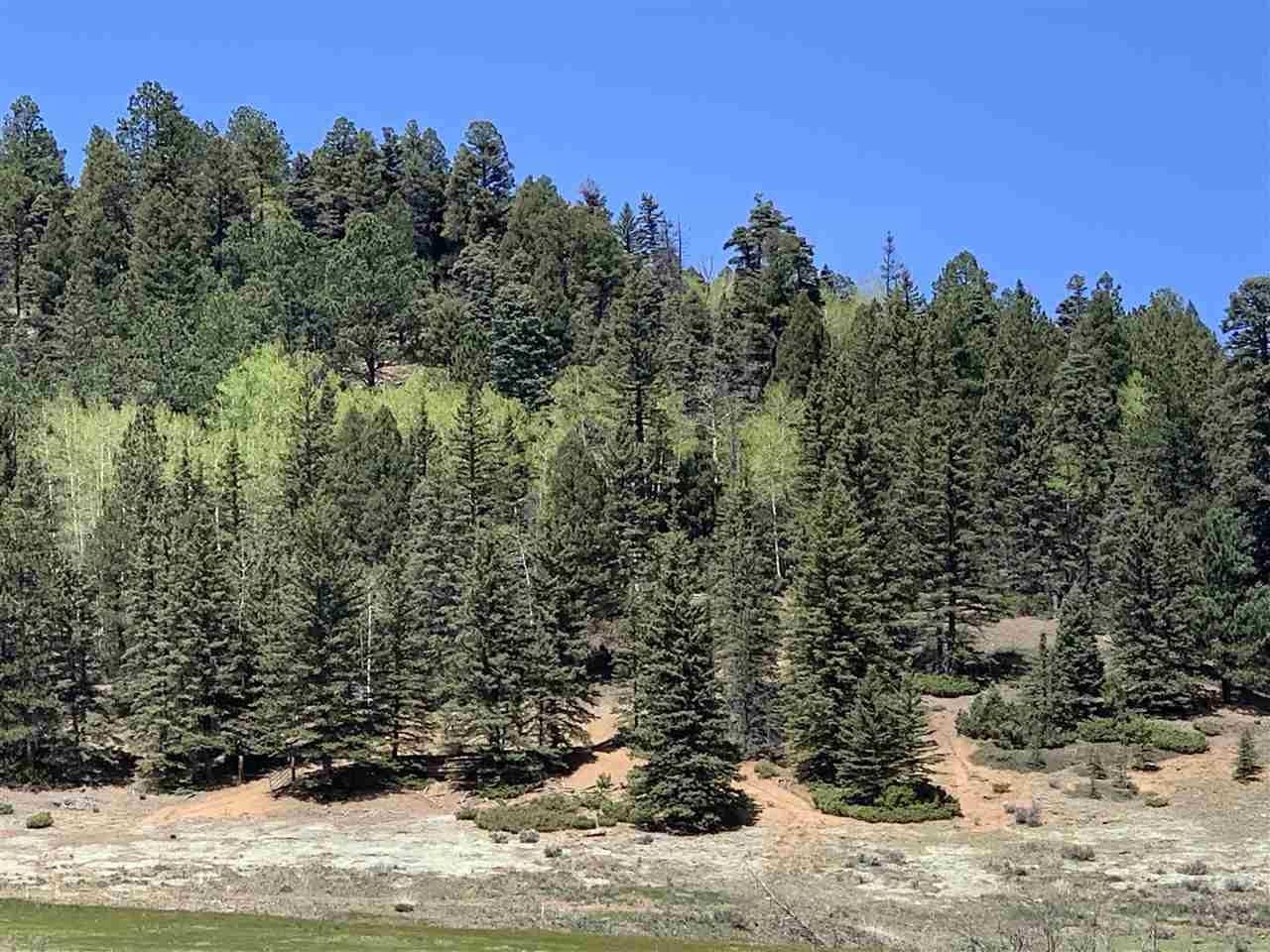 Photo for 0 Valle Escondido Road, Valle Escondido, NM 87571 (MLS # 105091)