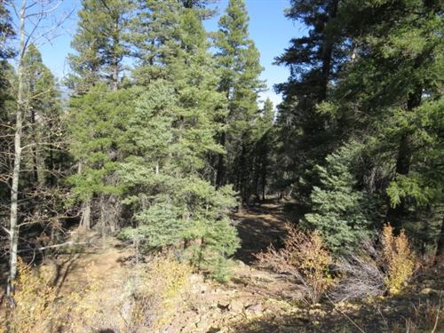 Photo of TBD Valley Road Lot 126, Angel Fire, NM 87710 (MLS # 106102)