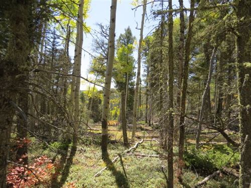 Photo of TBD Sierra Blanca Trail Lot 22, Angel Fire, NM 87710 (MLS # 106105)