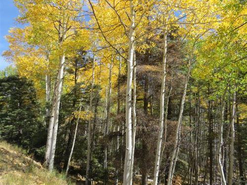 Photo of TBD Sierra Blanca Trail Lot 6, Angel Fire, NM 87710 (MLS # 106106)