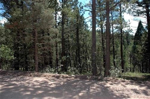 Photo for Lot 1552 Camino Real, Angel Fire, NM 87710 (MLS # 103127)