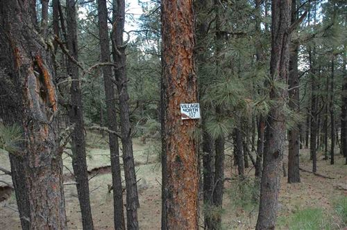 Photo of 107 valley road, angel fire, NM 87710 (MLS # 105177)