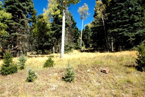 Photo of Lot 1476 Panorama Way, Angel Fire, NM 87710 (MLS # 103191)