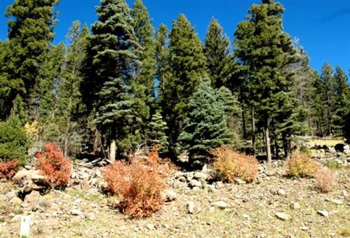 Photo of Lot 1296 Pleasant Valley Overlook, Angel Fire, NM 87710 (MLS # 103192)