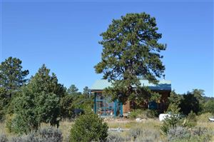 Photo of 00 FR 222, Tres Piedras, NM 87577 (MLS # 104206)