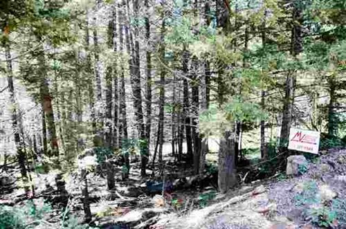 Photo of Lot 190 Taos Drive, Angel Fire, NM 87710 (MLS # 103226)