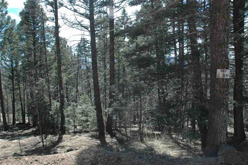 Photo of Lot 1534 El Camino Real, Angel Fire, NM 87710 (MLS # 103229)