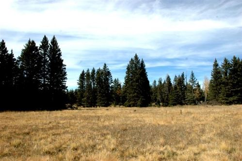 Photo of 76 Ute Valley Dr, Angel Fire, NM 87710 (MLS # 103242)