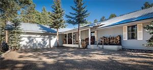 Photo of 19 Conchas, Angel Fire, NM 87710 (MLS # 104245)